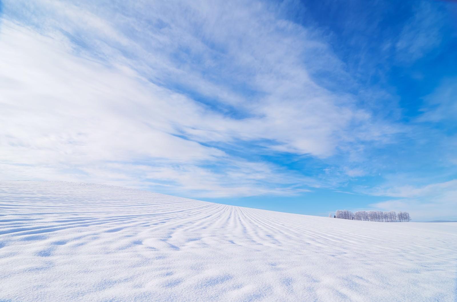 「北海道の広大な雪原北海道の広大な雪原」のフリー写真素材を拡大