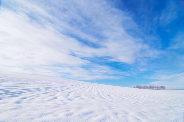「北海道の広大な雪原」のフリー写真素材
