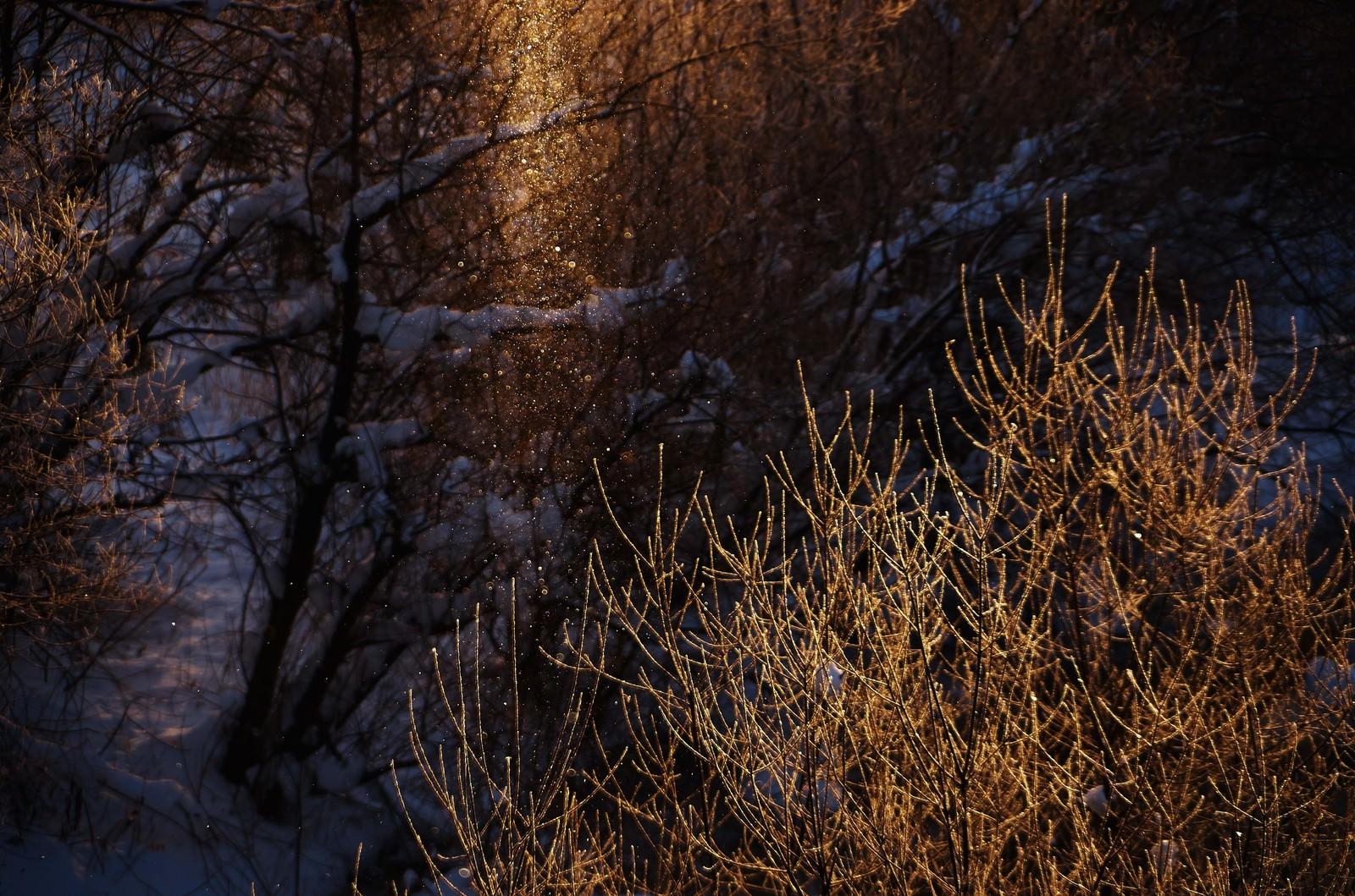 「北海道のサンピラー」の写真