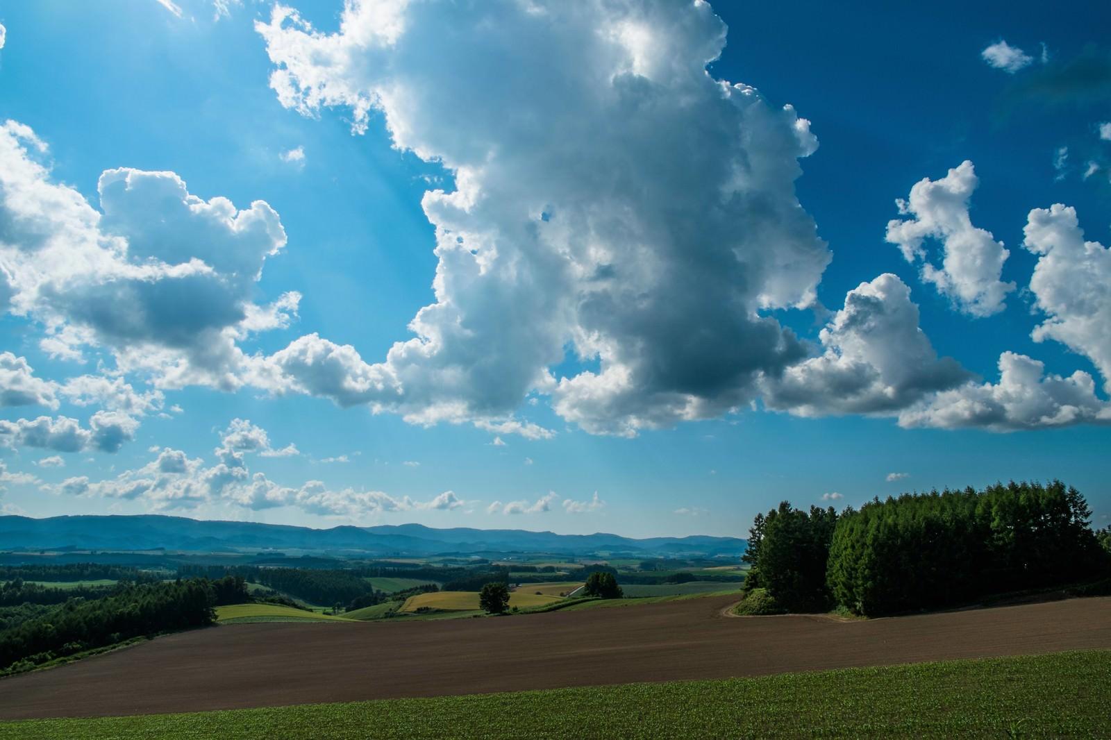 「北海道の広大な土地と青空」の写真