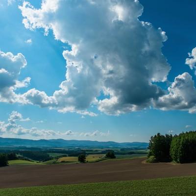 「北海道の広大な土地と青空」の写真素材