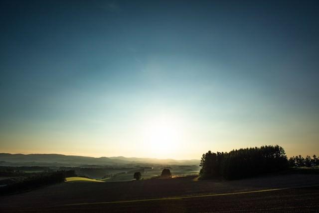 美瑛の朝靄の写真