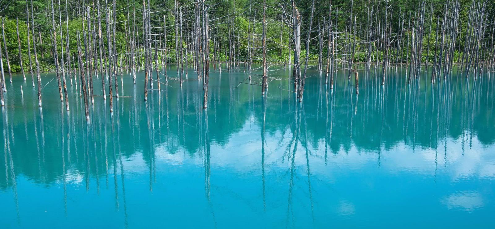 「青い池青い池」のフリー写真素材を拡大