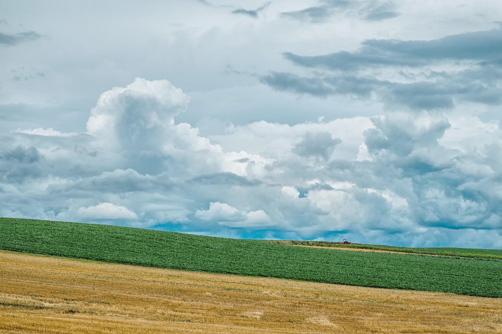 「美瑛の丘美瑛の丘」のフリー写真素材を拡大