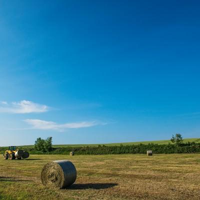 「北海道の広大な大地と牧草ロール」の写真素材