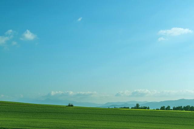 美瑛の続く農地の写真