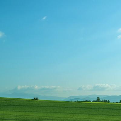 「美瑛の続く農地」の写真素材