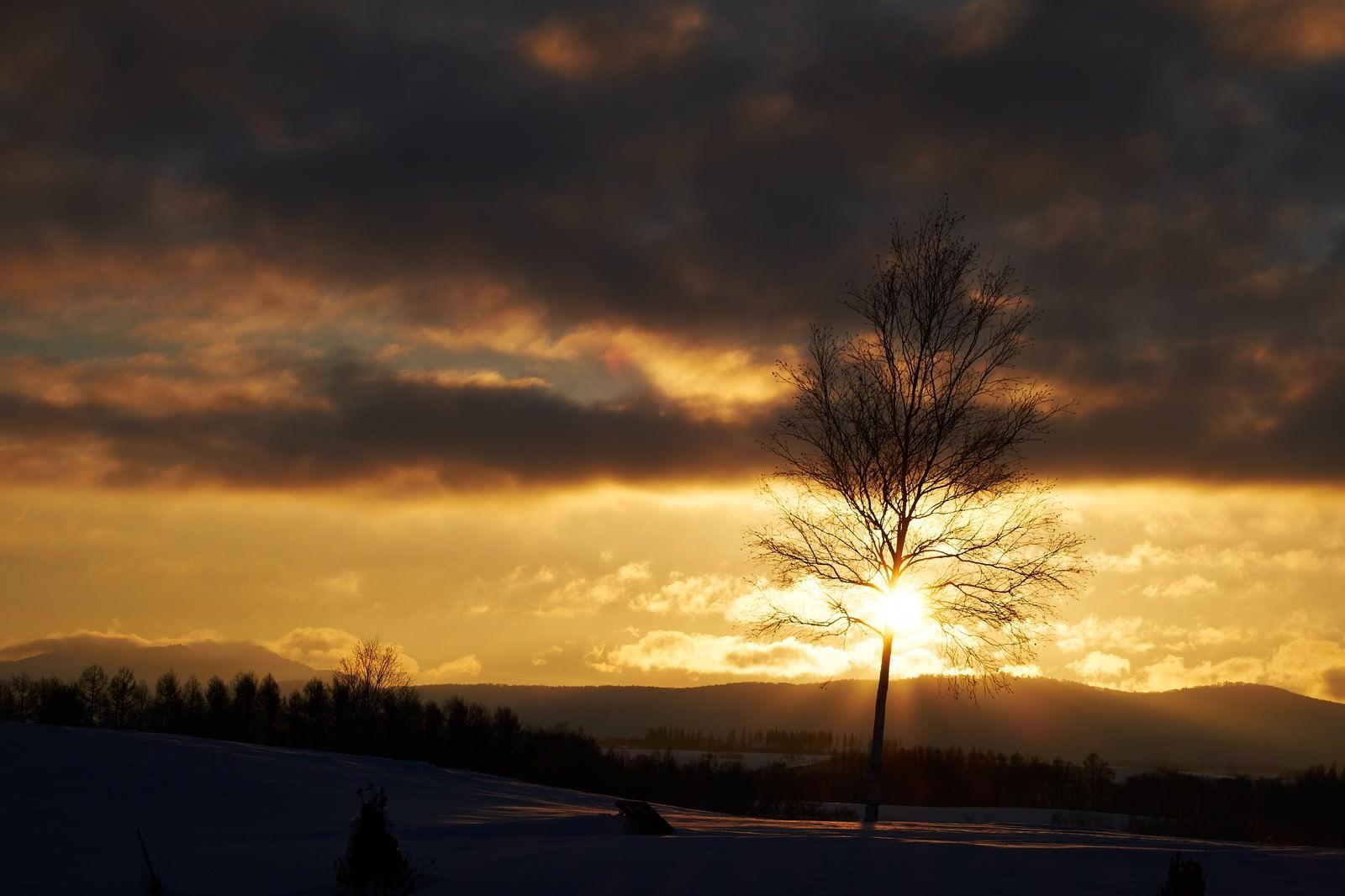 「冬の夕暮れ」の写真