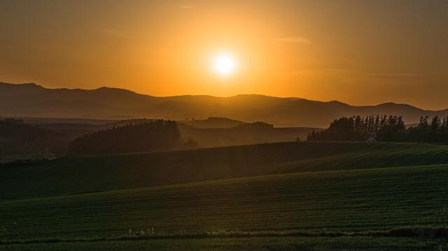 夕暮れの美瑛の丘の写真