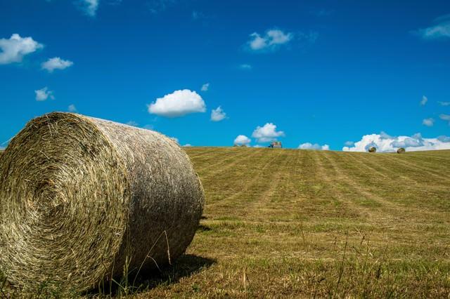 牧草ロールと青空の写真