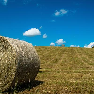 「牧草ロールと青空」の写真素材