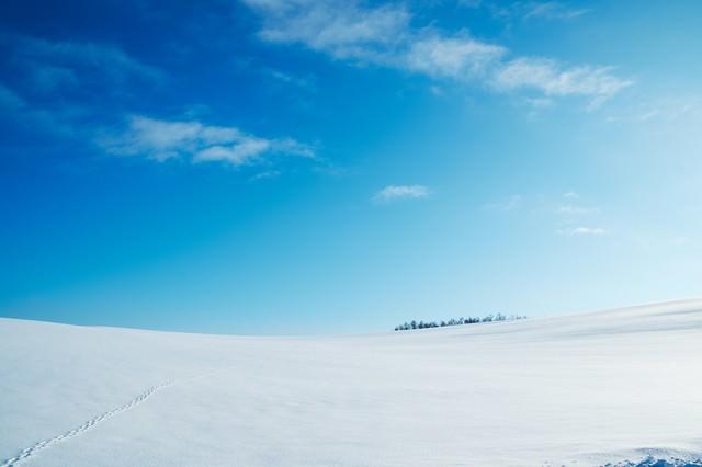 雪原と足跡の写真