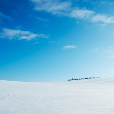 「雪原と足跡」の写真素材