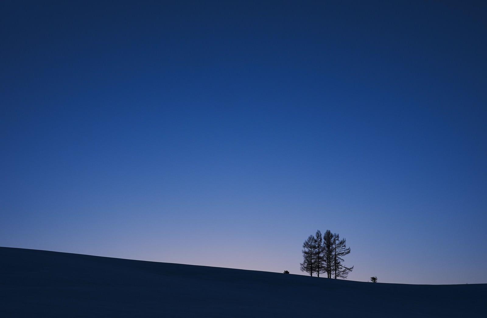 「夕暮れにただずむ5本の木夕暮れにただずむ5本の木」のフリー写真素材を拡大