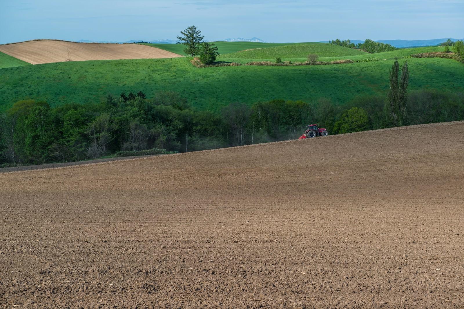 「緑と美瑛の丘、耕す農家」の写真