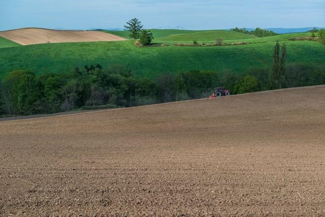 緑と美瑛の丘、耕す農家の写真