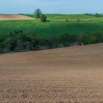 「緑と美瑛の丘、耕す農家」の写真素材