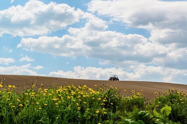 美瑛の耕す畑と青空の写真