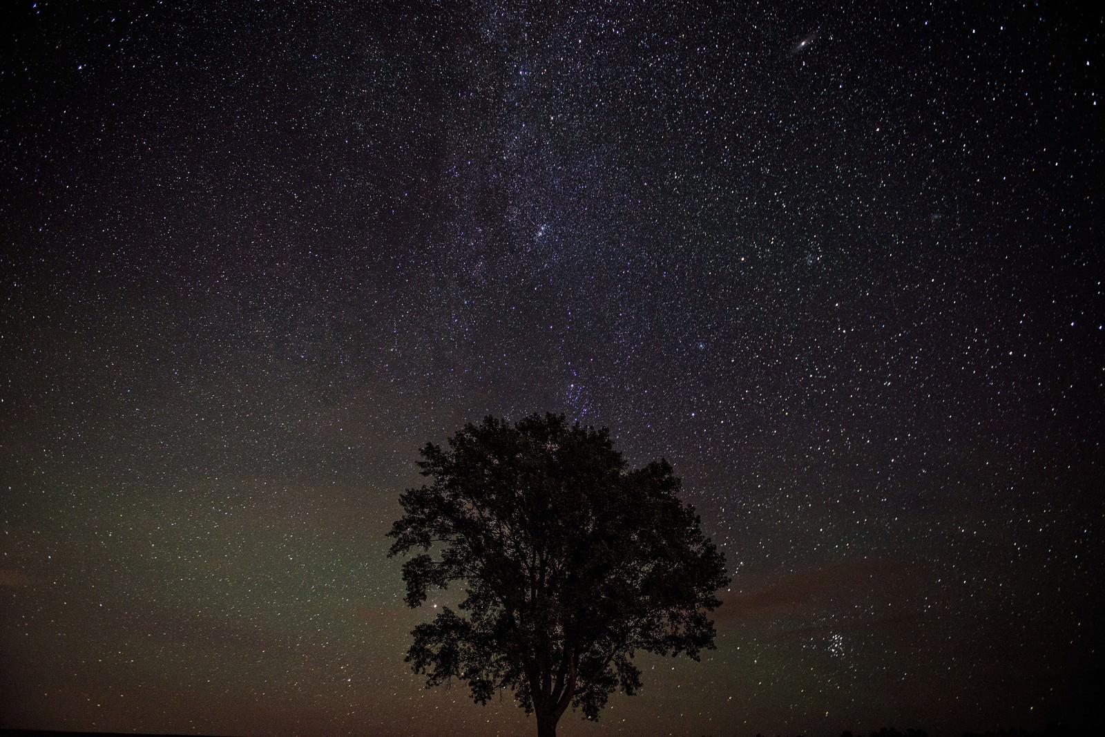 「美瑛の木と星空美瑛の木と星空」のフリー写真素材を拡大