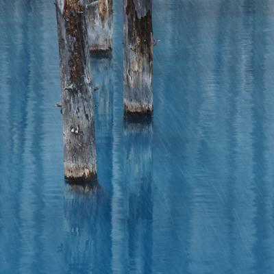 「雨が降る美瑛町白金の青い池」の写真素材