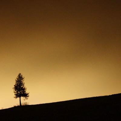 「夕暮れのグラデーションと美瑛の丘」の写真素材