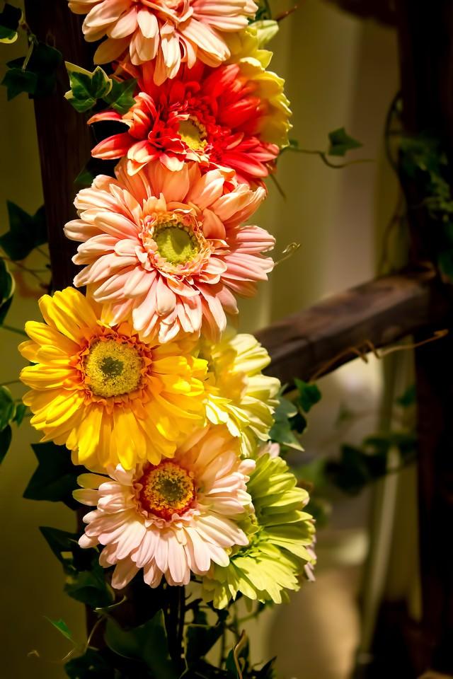 ハシゴにかかる花の写真