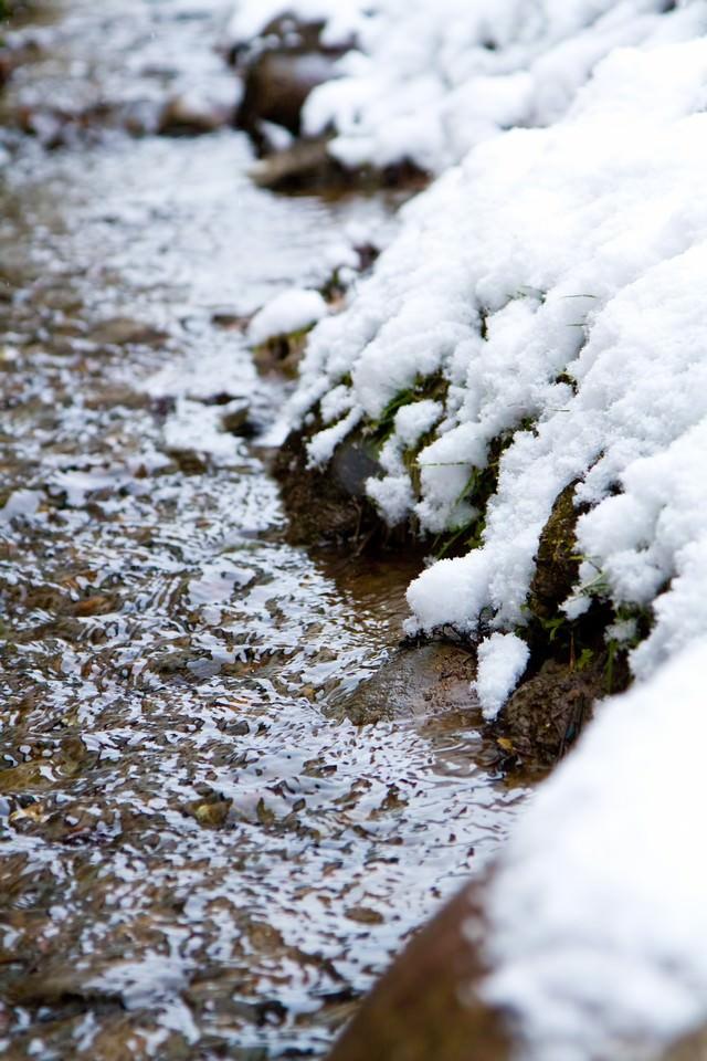 雪解けの小川の写真