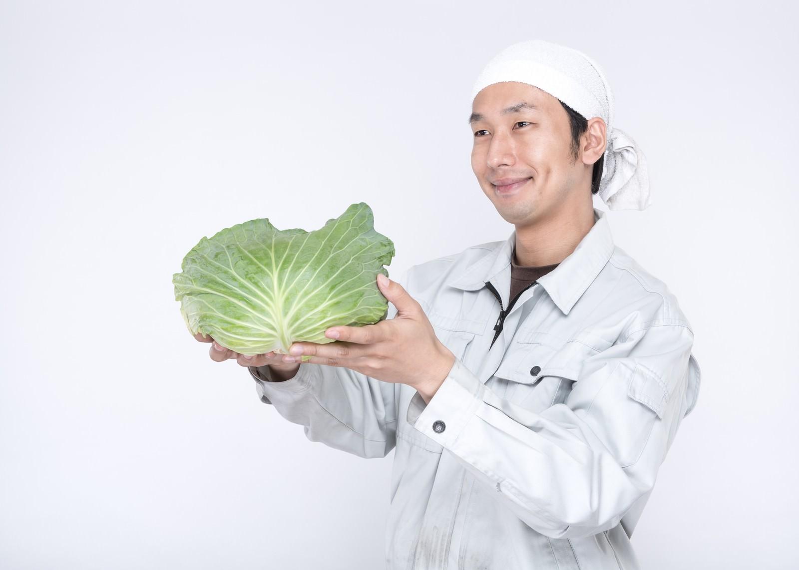 「愛情込めて生産した有機野菜を渡す農家の男性」の写真[モデル:大川竜弥]