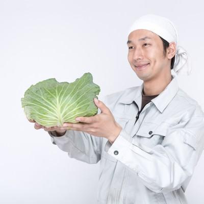 「愛情込めて生産した有機野菜を渡す農家の男性」の写真素材