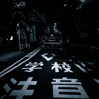 夜間の学校注意(スクールゾーン)の写真