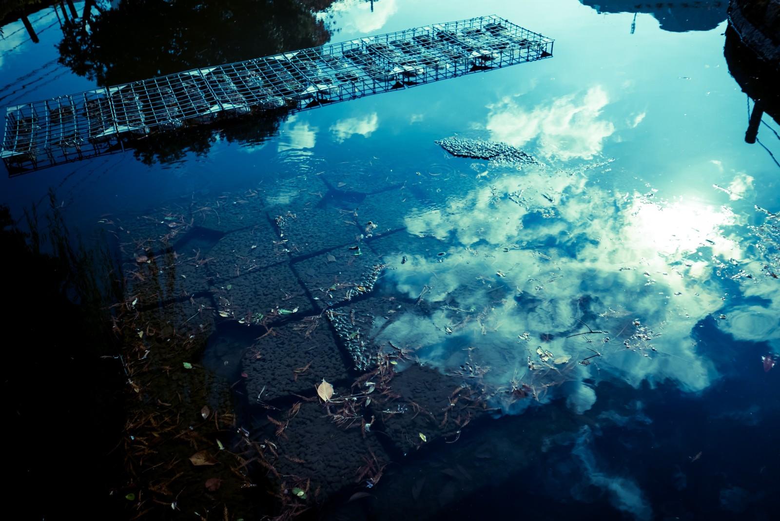 「水面に反射する空」の写真