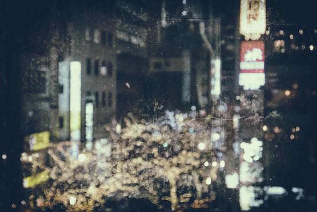 ライトアップされた繁華街(フィルム)の写真