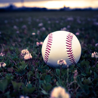 「河川敷に転がる野球のボール」の写真素材