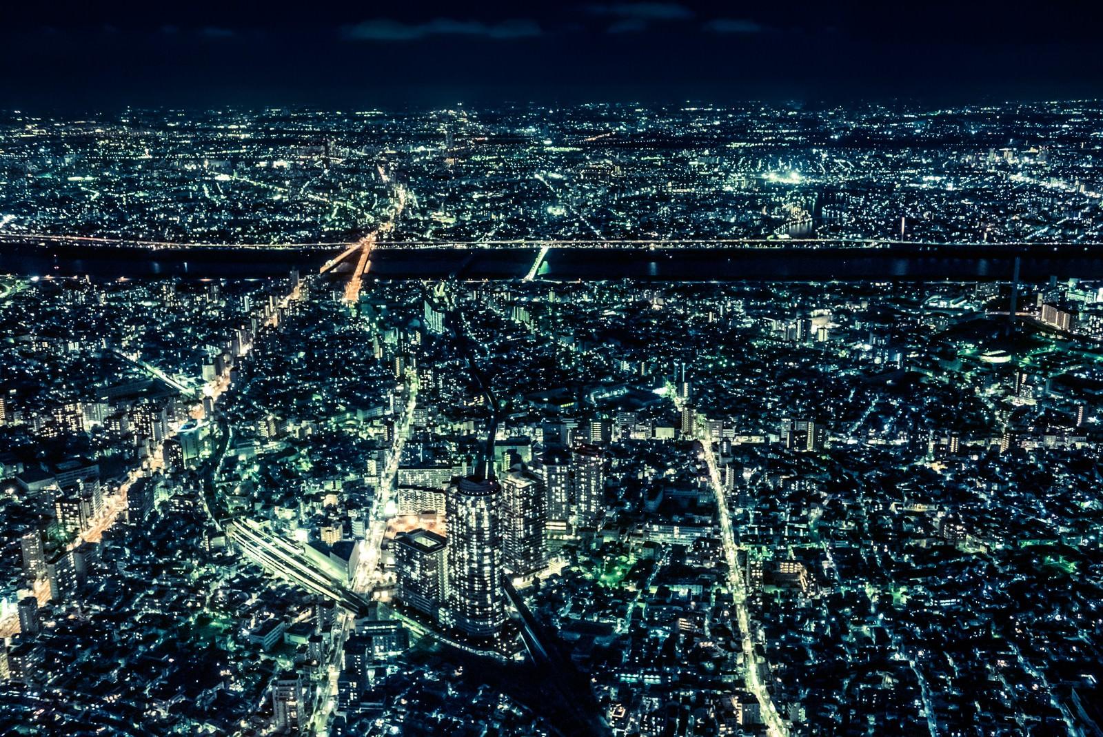 「大都会、東京の夜景」の写真