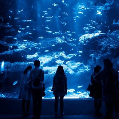 「巨大な水槽を見つめる来場者」の写真素材