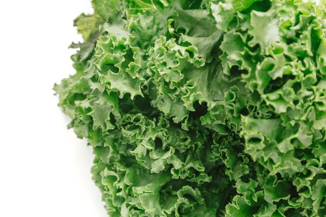 採れたばかりの葉物野菜の写真