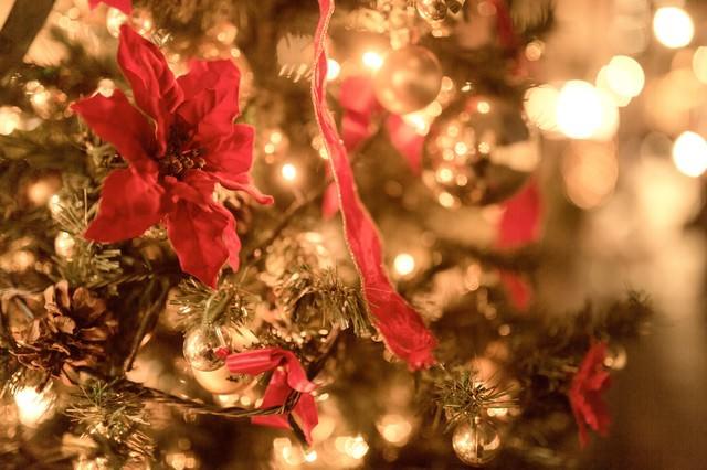 輝くクリスマスツリーの写真