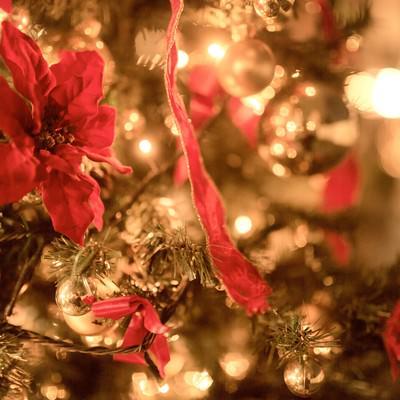 「輝くクリスマスツリー」の写真素材