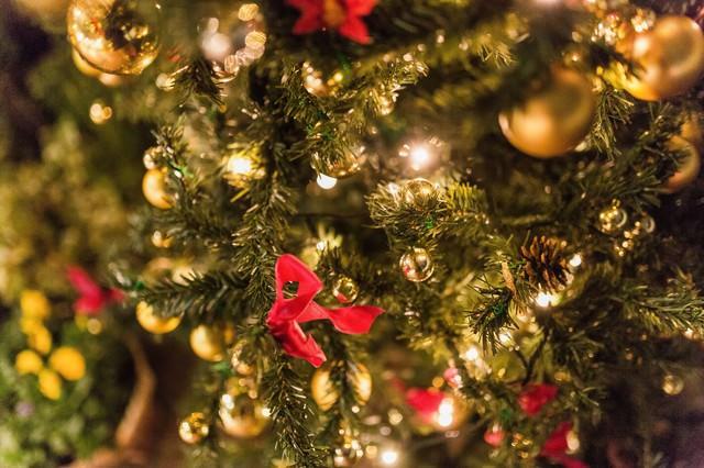 クリスマスの時期の写真