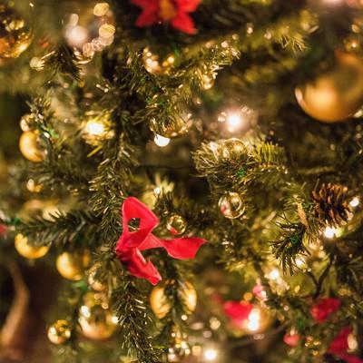 「クリスマスの時期」の写真素材