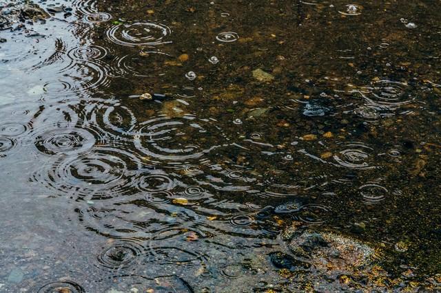 雨の日の水たまりの写真