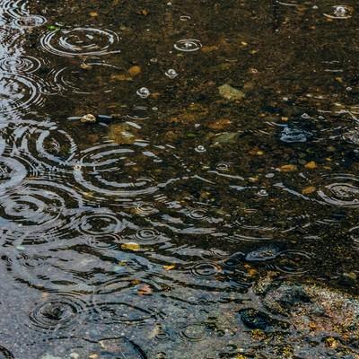 「雨の日の水たまり」の写真素材