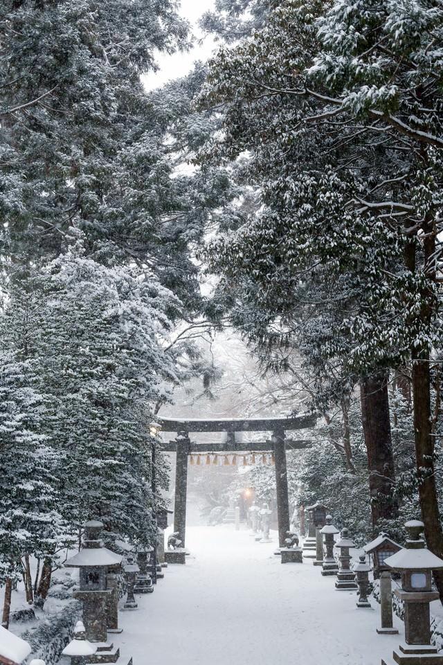積雪の鹽竈神社の写真