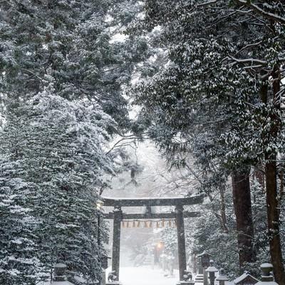 「積雪の鹽竈神社」の写真素材