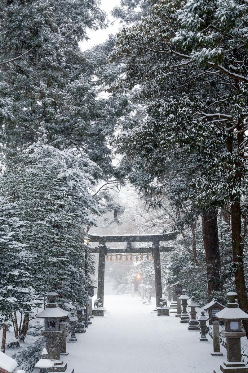 「積雪の鹽竈神社」の写真