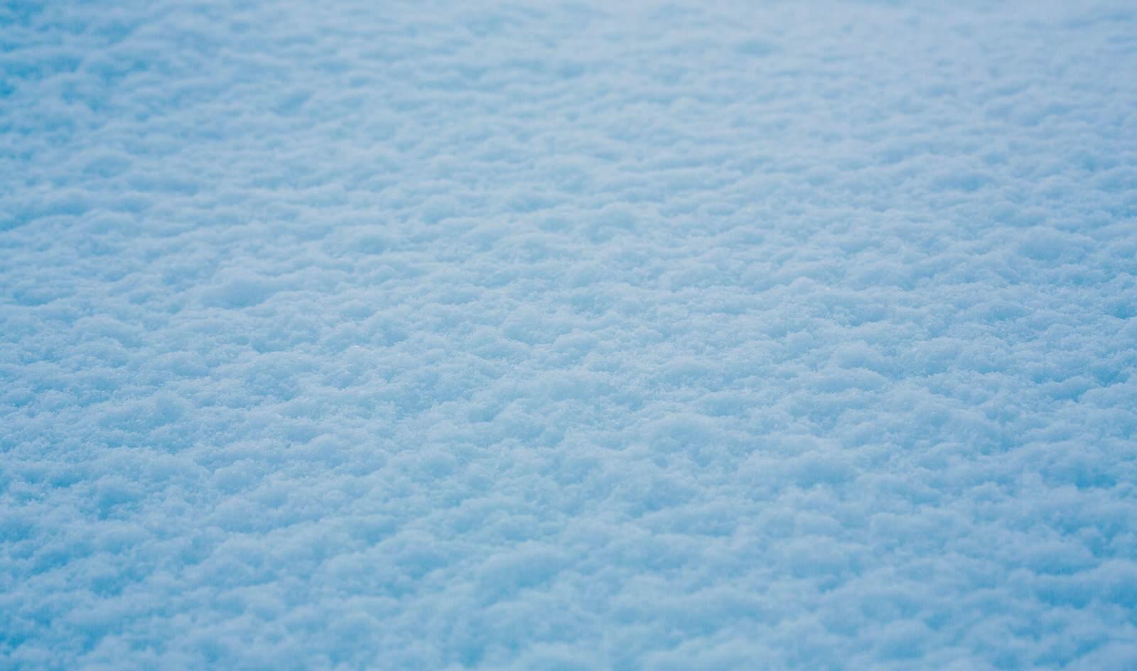 「積もった雪」の写真