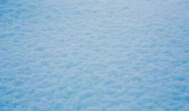 積もった雪の写真