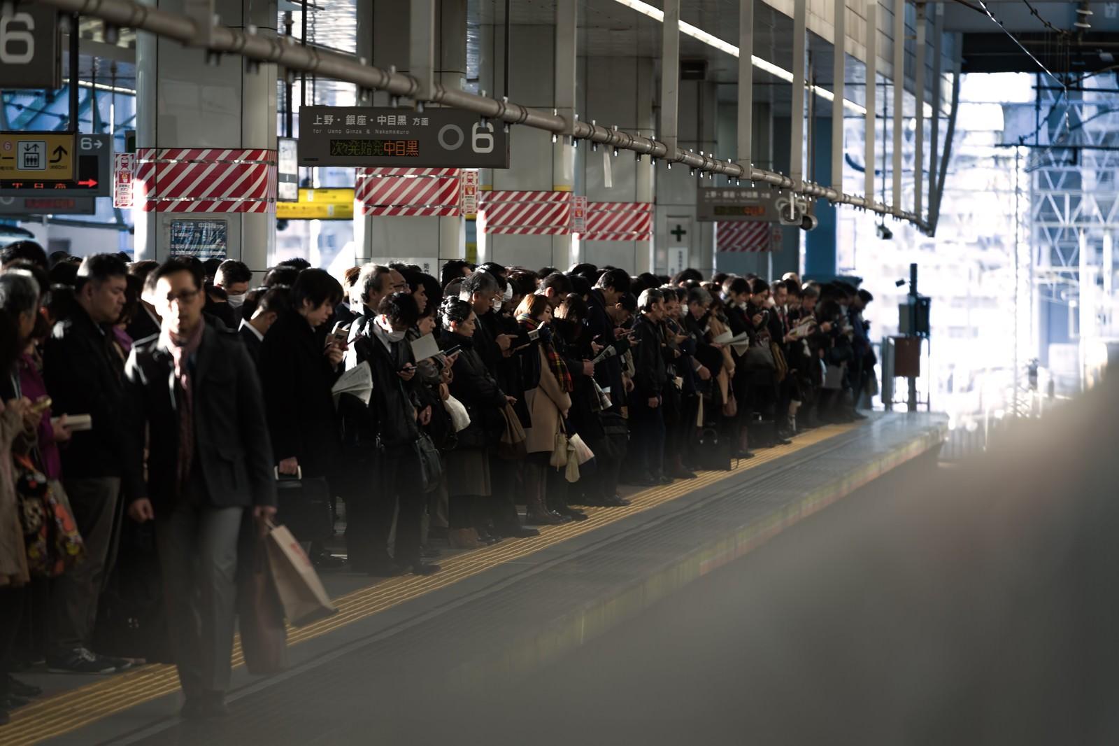 「通勤時のラッシュ:社畜の安寧」の写真