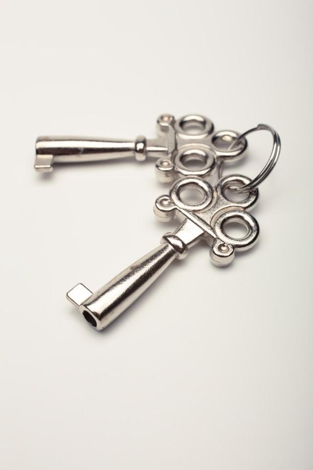 おもちゃの鍵の写真