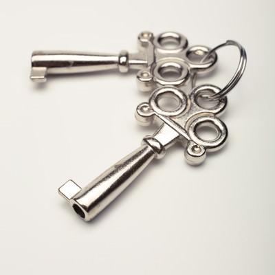 「おもちゃの鍵」の写真素材